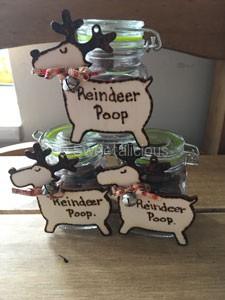 Reindoor Poop