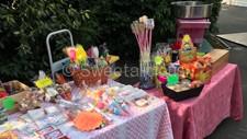 Etchells Primary School Summer Fair 2018